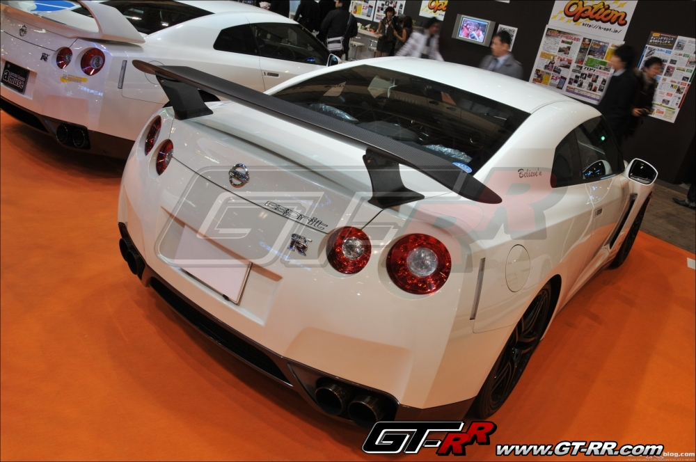 Esprit Dry Carbon GT Wing 262 